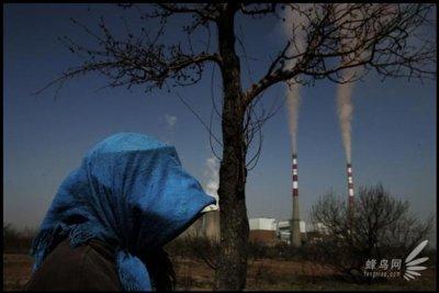Госкорпорация Сибирь - Дальний Восток, ВТО ...